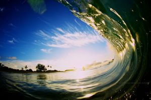 Hawaii Barrel / Hawaii Wave