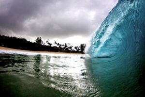 North Shore Wave / Keiki Beach Wave